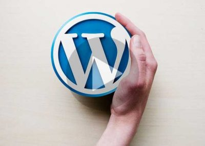 Create Your First WordPress Site in Under an Hour
